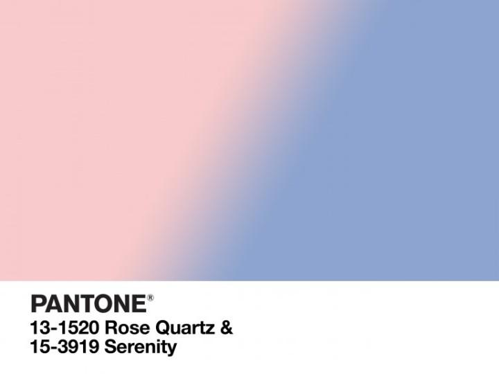 pantone-768x576